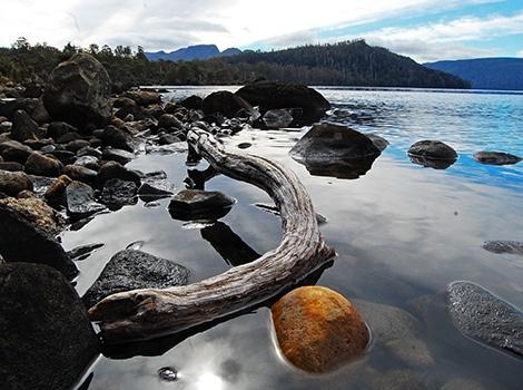 Lake St Clair, Tasmania 002