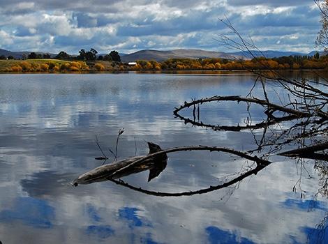 Reflections, Derwent Valley, Tasmania