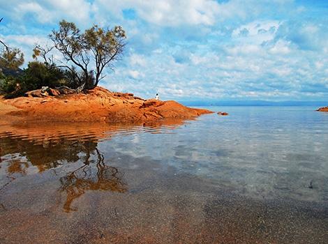 Honeymoon Bay, Tasmania