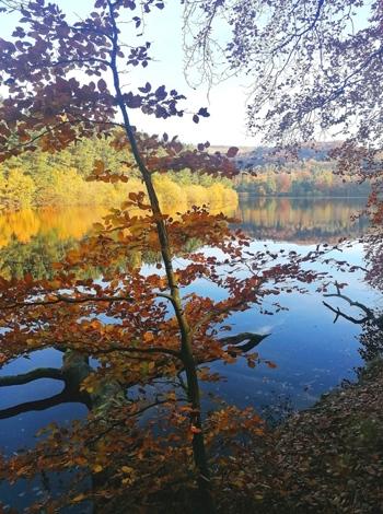 Agden Reservoir, Bradfield, 1