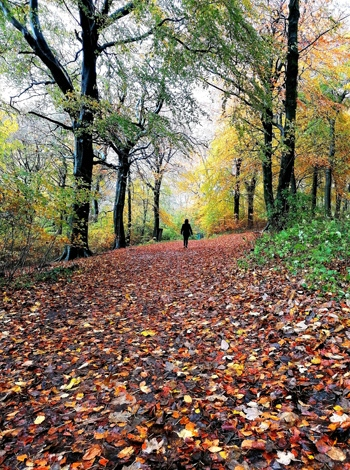 Woman Walking, Longshaw