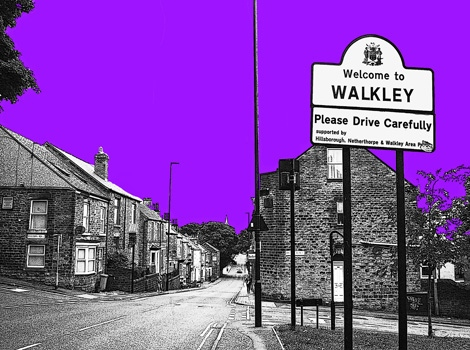 Walkley- Purple