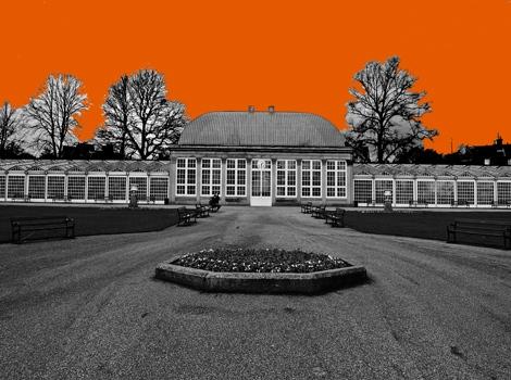 Botanical Gardens Orange